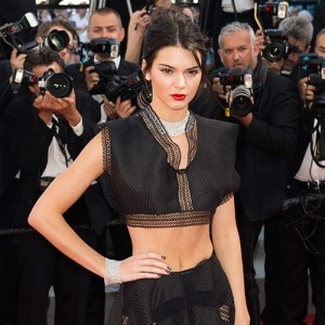 The Cannes Film Festival 2015